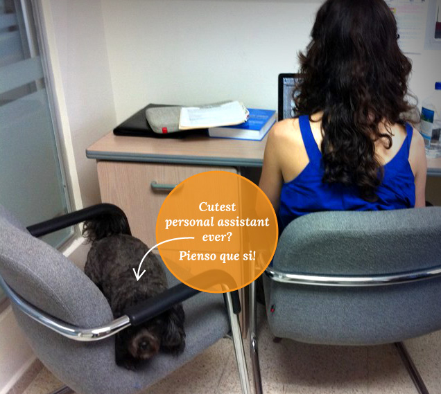 Gopi, personal assistant / staff siesta